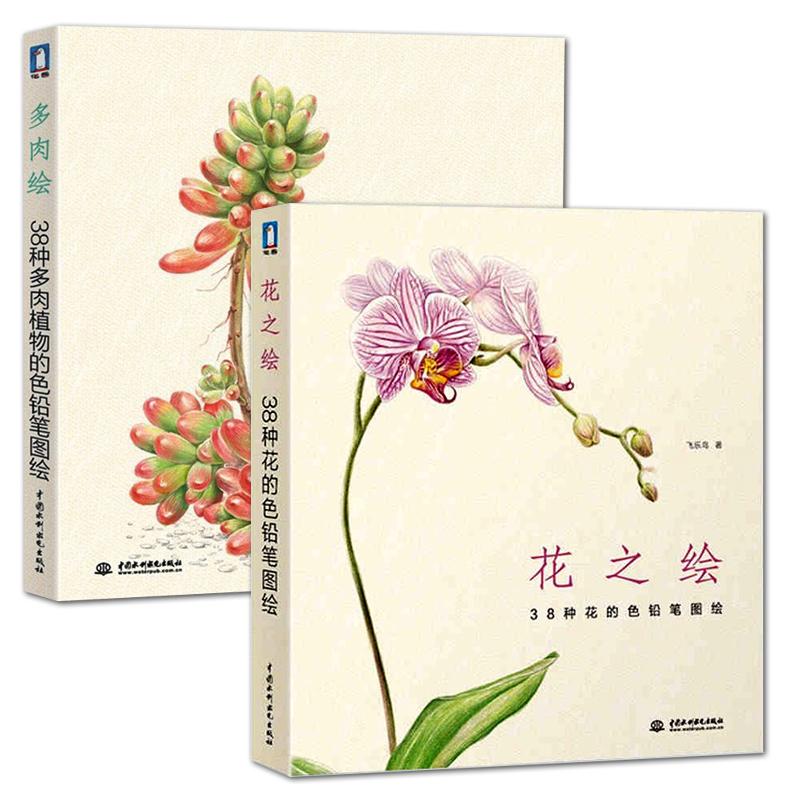 彩铅绘画手绘书 色铅笔植物花卉技巧自学教材书籍 彩色铅笔画