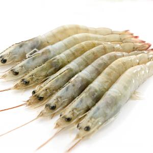 【海鲜特产】国联水产 进口冰冻厄瓜多尔白虾 50-60只/kg 1.8kg
