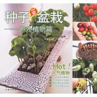 种子变盆栽:户外植物篇
