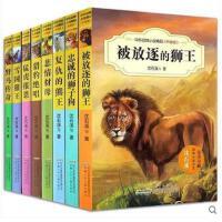 正版 沈石溪动物小说全集套系列中外动物小说精品(第1辑升级版共8册)忠诚的狮子狗雪国狼王被放逐的狮王复仇的熊王儿童书籍