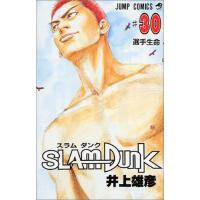 [现货]进口日文 漫画 SLAM DUNK 灌篮高手 30
