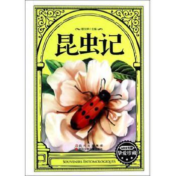 昆虫记/mini书屋