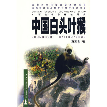 中国白头叶猴 2002