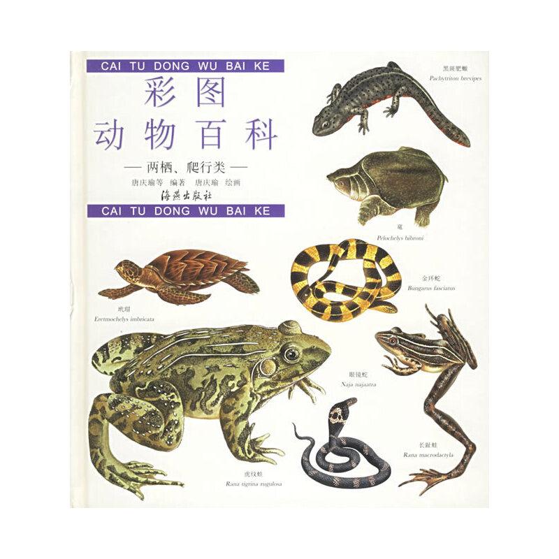 彩图动物百科:两栖,爬行类