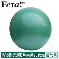 FETA 非他 瑜伽球无异味 蜂窝微孔发泡 加厚防爆专业瑜珈球 磨砂防滑孕妇分娩运动健身球瑞士球普拉提球(55cm/65cm/75cm) 送打气筒