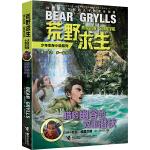 荒野求生少年生存小说系列12:猎豹幽谷的双重潜伏