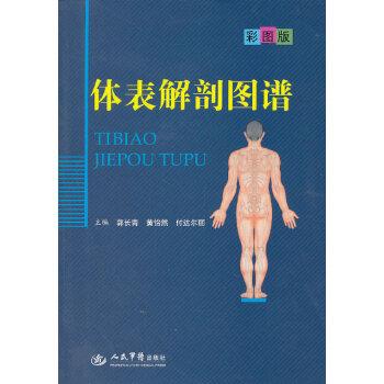 体表解剖图谱.彩图版