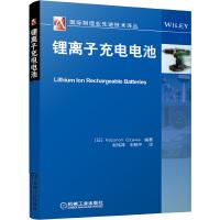 锂离子充电电池(国际制造业先进技术译丛)