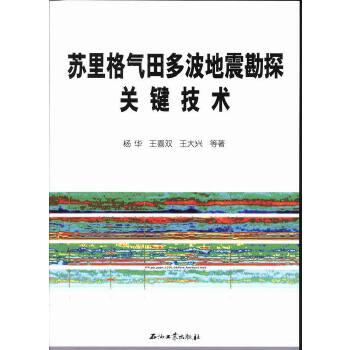 苏里格气田多波地震勘探关键技术