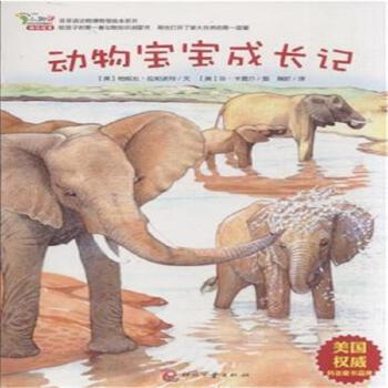 动物宝宝成长记