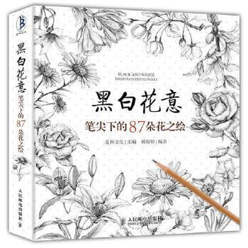 教材手绘书铅笔画教程入门书籍插画绘画自学书工笔画教程减压手绘书hh